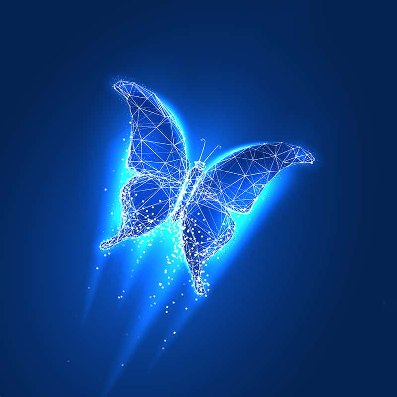 """digital butterfly piccture to illustrate """"butterfly metaphor"""""""